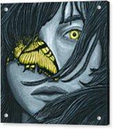 Metamorphia Acrylic Print