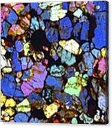 Meteorite Nwa 6435, Light Micrograph Acrylic Print