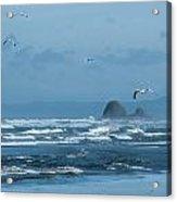 Misty Copalis Rock And Gulls Acrylic Print