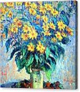 Monet's Jerusalem  Artichoke Flowers Acrylic Print