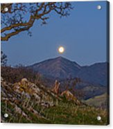 Moon Over Mt Diablo Acrylic Print