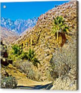 Mountain Peaks From Lower Palm Canyon Trail In Indian Canyons Near Palm Springs-california Acrylic Print