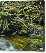 Mountain Stream Acrylic Print by Jaroslaw Grudzinski
