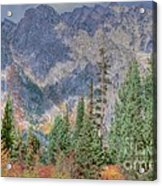 Mountains And Trees Acrylic Print