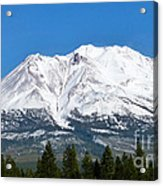 Mt. Shasta Acrylic Print