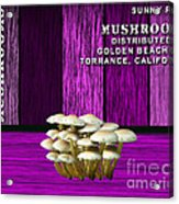 Mushroom Farm Acrylic Print