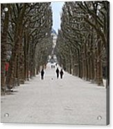 National Museum Of Natural History - Paris France - 01131 Acrylic Print by DC Photographer
