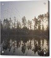 Natural Network Acrylic Print