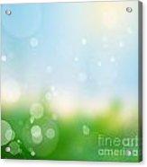 Nature Blur Summer Background.  Acrylic Print