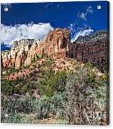 New Mexico Landscape Acrylic Print