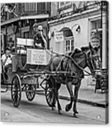 New Orleans - Carriage Ride Bw Acrylic Print