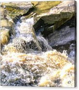 Niagara Escarpment 2 Acrylic Print