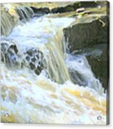 Niagara Escarpment 4 Acrylic Print