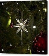 Night View Christmas Tree   1 Of 4 Acrylic Print