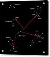 Northern Hemisphere Constellations Acrylic Print