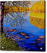 October Afternoon Acrylic Print