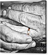 Old Hands With Wedding Band Acrylic Print