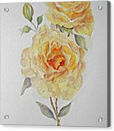One Rose Or Two Acrylic Print