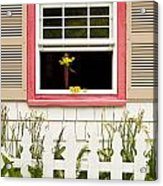 Open Window With Yellow Flower In Vase Acrylic Print