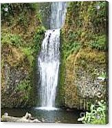 Oregon Waterfall Acrylic Print