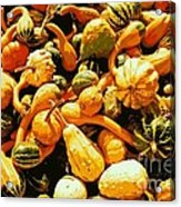Out Of My Gourd Acrylic Print