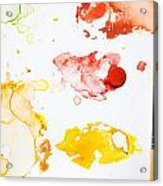Paint Splatters And Paint Brush Acrylic Print