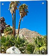 Palm Oasis On Borrego Palm Canyon Trail In Anza-borrego Desert Sp-ca Acrylic Print