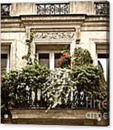 Paris Windows Acrylic Print