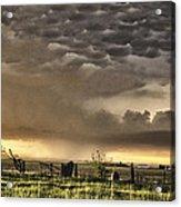 Pasture Sunset Acrylic Print