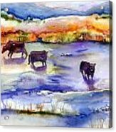 Pastureland Acrylic Print