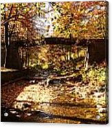 Peace Acrylic Print by Lucy D