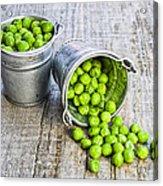 Peas Acrylic Print