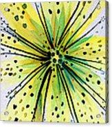 Pereskias Acrylic Print