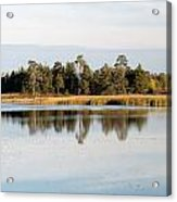 Picture Perfect Acrylic Print