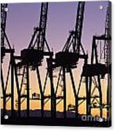 Port Of Seattle Cranes Silhouetted Acrylic Print