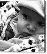 Presious Baby Acrylic Print
