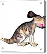 Protoceratops Dinosaur Acrylic Print