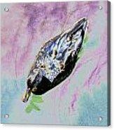 Psychedelic Mallard Duck 2 Acrylic Print