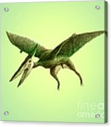 Pterodactyl, Cretaceous Dinosaur Acrylic Print
