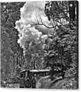 Puffing Billy Acrylic Print