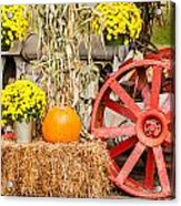 Pumpkins Next To An Old Farm Tractor Acrylic Print