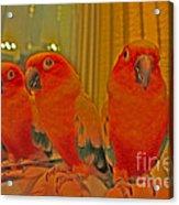 Purdy Peaches Acrylic Print by Rebecca Christine Cardenas