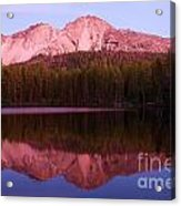 Purple Reflections Acrylic Print