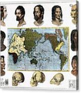 Racial Types, 19th Century Acrylic Print