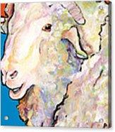 Rainbow Ram Acrylic Print