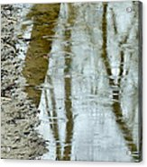 Raindrops On Reflections II Acrylic Print