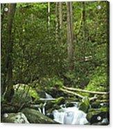 Rapids At Springtime Acrylic Print by Andrew Soundarajan