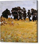 Reapers Resting In A Wheat Field Acrylic Print