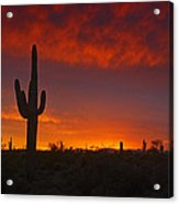 Red Desert Skies  Acrylic Print