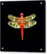 Red Dragonfly Small Acrylic Print